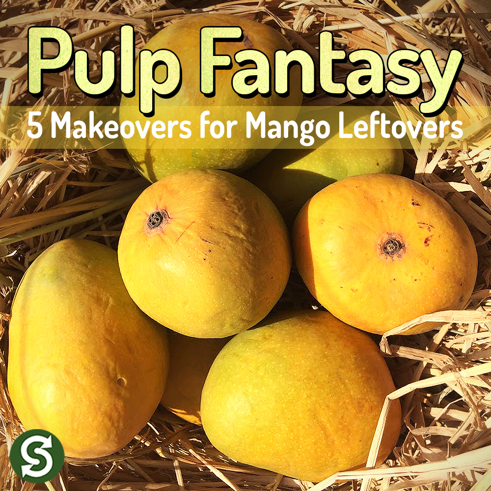 Pulp Fantasy | 5 Makeovers for Mango Leftovers!