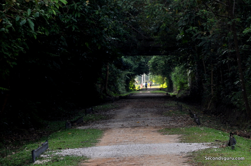 Walking the Green Corridor, Singapore | Wide spaces and flat terrain make for an easy morning trail