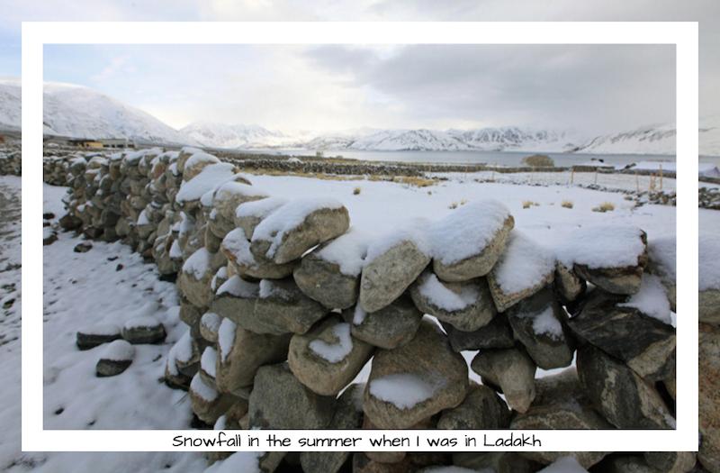 Ladakh summer snow, secondsguru, ananya saluja