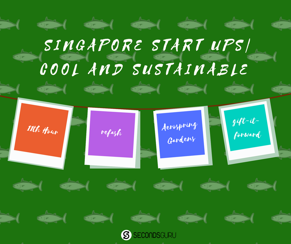 Start ups in singapore that are environment friendly green, sustainable living singapore