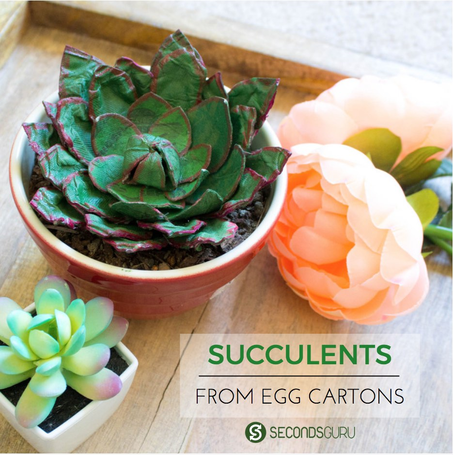Egg carton craft | Do something different this Easter! Use egg cartons to create a succulent for your coffee table