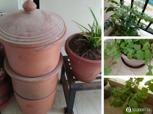 composting at home herb garden in the balcony