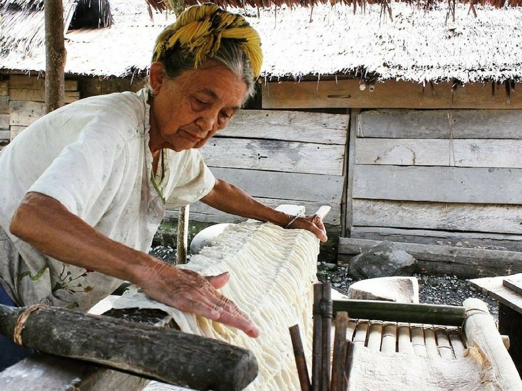 Artisan at work in Sulawesi, creating barkcloth the centuries-old way.