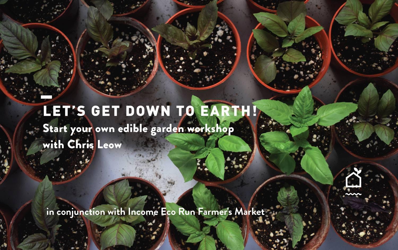 Start Your Own Edible Garden   Secondsguru