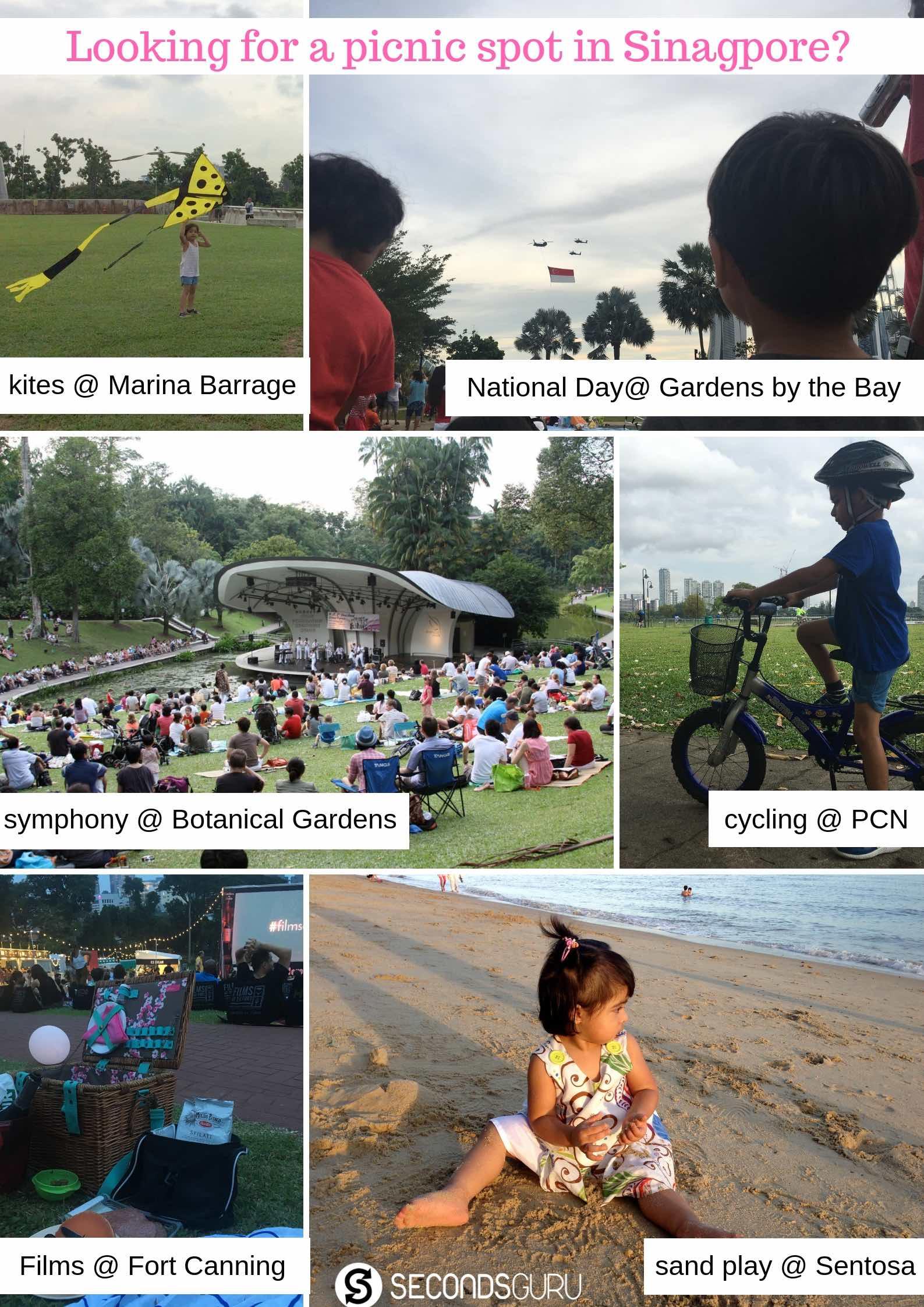 eco picnic singapore