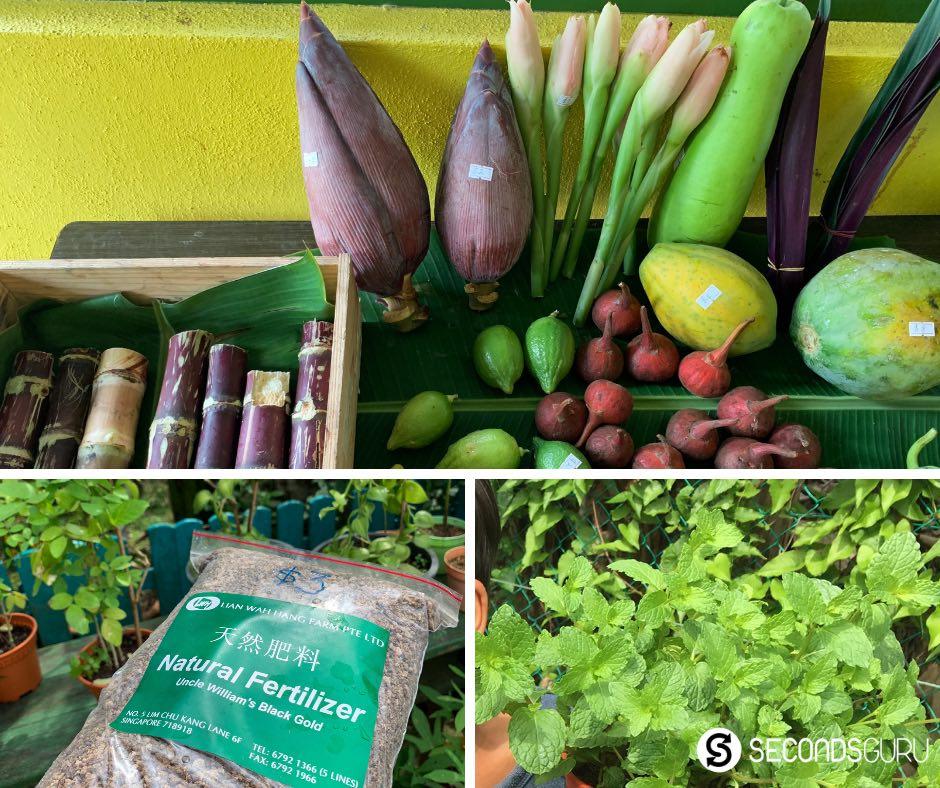 local produce singapore