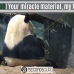 bamboo the miracle material alternative to plastic