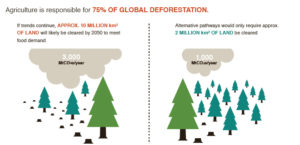 Emmissions from Forestry and land use