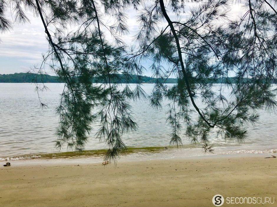 coney island quiet beach