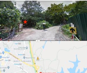 Chestnut Park Unpaved trail