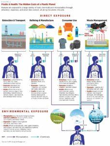 Plastic & health infographic