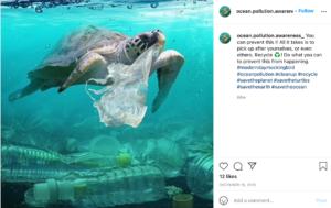 Ocean Pollution _Turtles