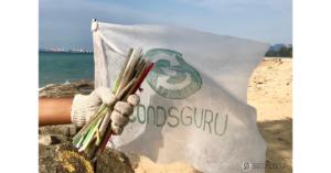 Beach cleanup straws