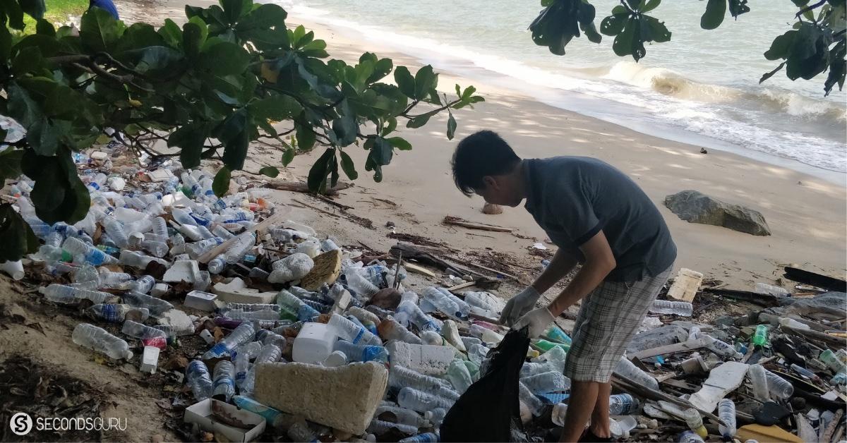plastic bottles on the coastline